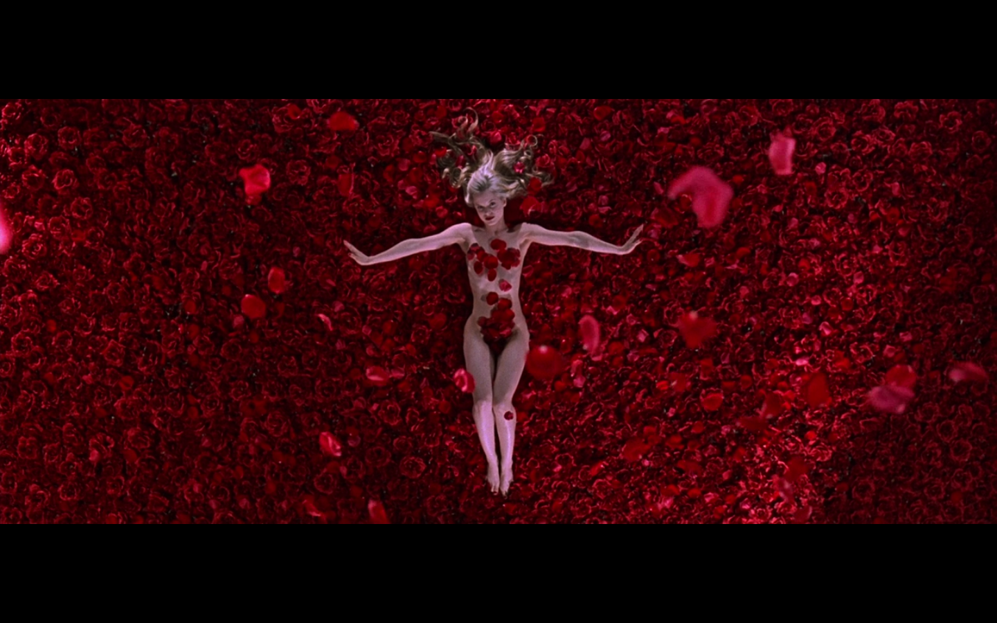 american beauty movie essays American beauty (1999) on imdb: plot summary, synopsis, and more.
