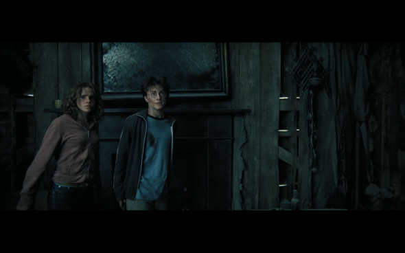 Harry Potter and the Prisoner of Azkaban - 1015