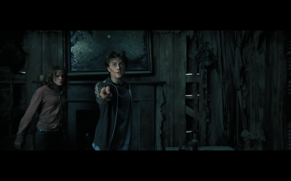 Harry Potter and the Prisoner of Azkaban - 1016