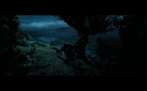 Harry Potter and the Prisoner of Azkaban - 1099