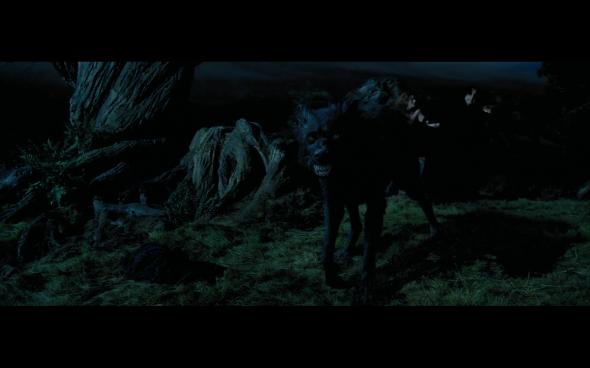 Harry Potter and the Prisoner of Azkaban - 1100