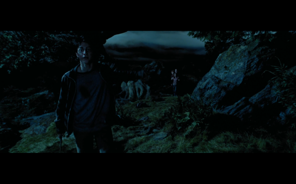 Harry Potter and the Prisoner of Azkaban - 1105