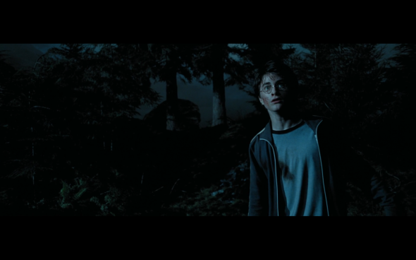 Harry Potter and the Prisoner of Azkaban - 1109