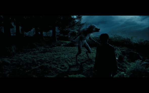 Harry Potter and the Prisoner of Azkaban - 1110