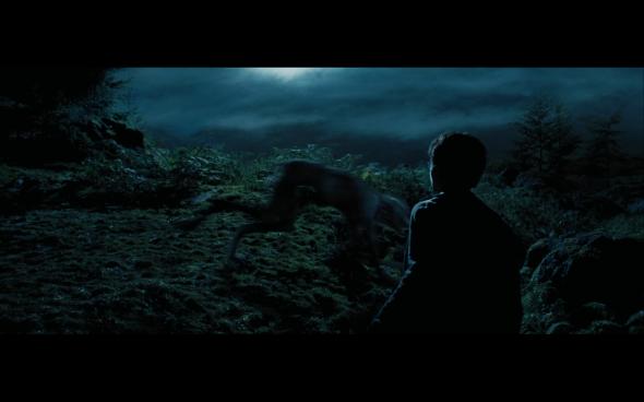 Harry Potter and the Prisoner of Azkaban - 1113
