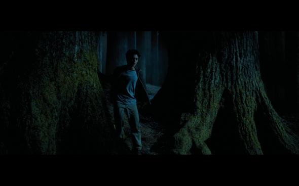 Harry Potter and the Prisoner of Azkaban - 1119