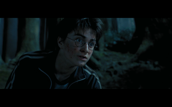 Harry Potter and the Prisoner of Azkaban - 1124