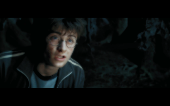 Harry Potter and the Prisoner of Azkaban - 1164