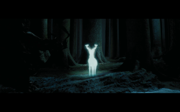 Harry Potter and the Prisoner of Azkaban - 1165