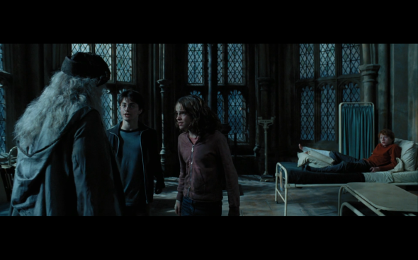 Harry Potter and the Prisoner of Azkaban - 1191