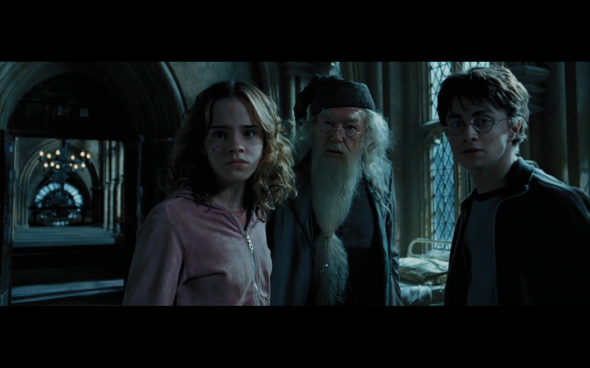 Harry Potter and the Prisoner of Azkaban - 1192