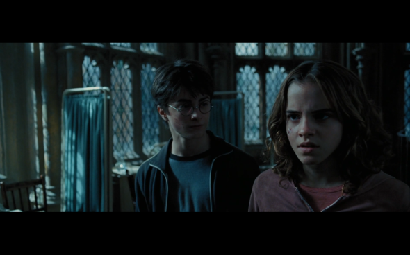 Harry Potter and the Prisoner of Azkaban - 1203