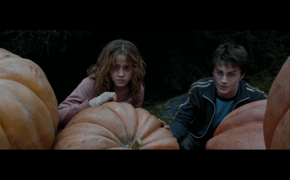 Harry Potter and the Prisoner of Azkaban - 1255