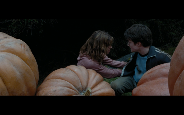 Harry Potter and the Prisoner of Azkaban - 1256