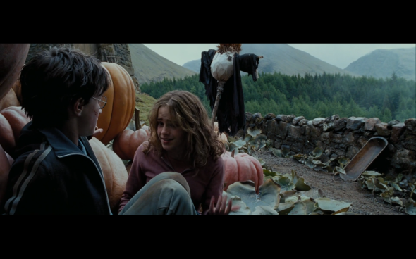 Harry Potter and the Prisoner of Azkaban - 1257