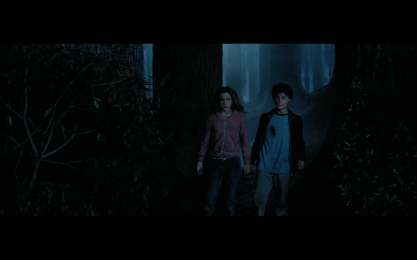 Harry Potter and the Prisoner of Azkaban - 1303
