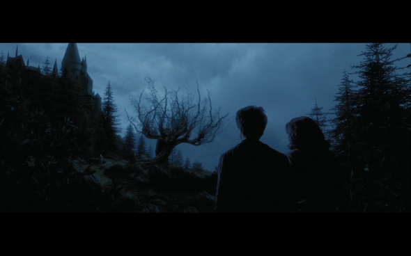 Harry Potter and the Prisoner of Azkaban - 1304