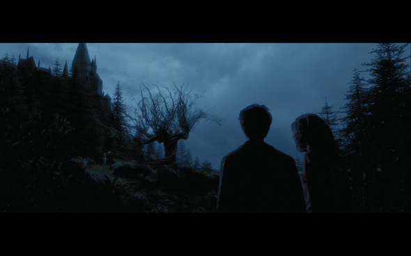 Harry Potter and the Prisoner of Azkaban - 1305