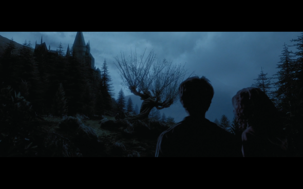 Harry Potter and the Prisoner of Azkaban - 1306