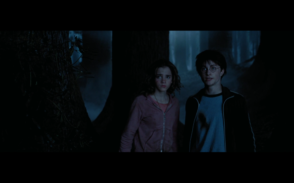 Harry Potter and the Prisoner of Azkaban - 1307
