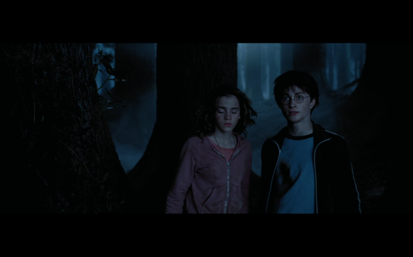 Harry Potter and the Prisoner of Azkaban - 1308