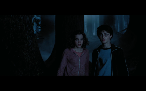 Harry Potter and the Prisoner of Azkaban - 1309