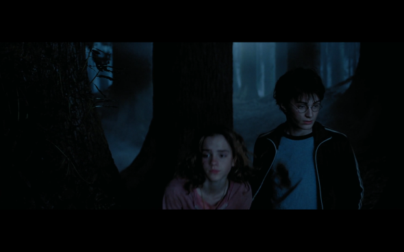 Harry Potter and the Prisoner of Azkaban - 1311