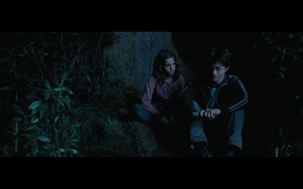 Harry Potter and the Prisoner of Azkaban - 1320