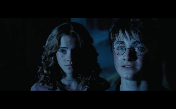 Harry Potter and the Prisoner of Azkaban - 1330