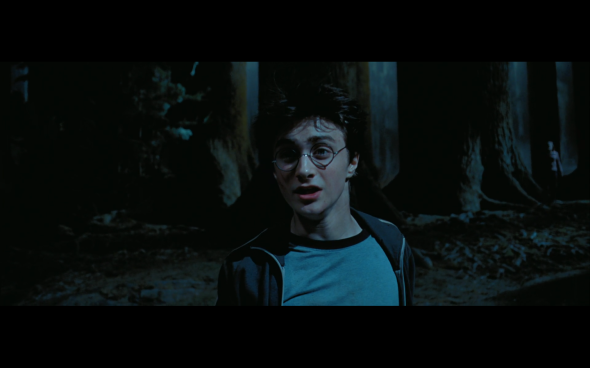 Harry Potter and the Prisoner of Azkaban - 1377
