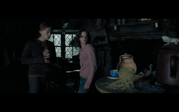 Harry Potter and the Prisoner of Azkaban - 863