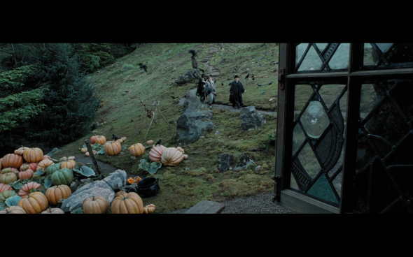Harry Potter and the Prisoner of Azkaban - 868