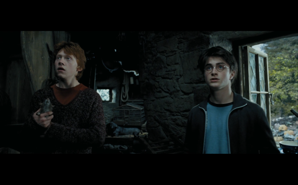 Harry Potter and the Prisoner of Azkaban - 869