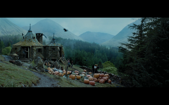 Harry Potter and the Prisoner of Azkaban - 874
