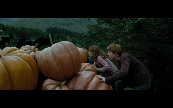 Harry Potter and the Prisoner of Azkaban - 877