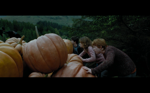Harry Potter and the Prisoner of Azkaban - 878