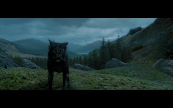 Harry Potter and the Prisoner of Azkaban - 907