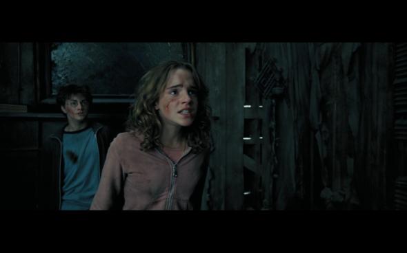 Harry Potter and the Prisoner of Azkaban - 981