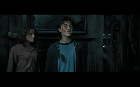 Harry Potter and the Prisoner of Azkaban - 995