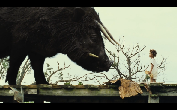 Beasts of the Southern Wild - 30