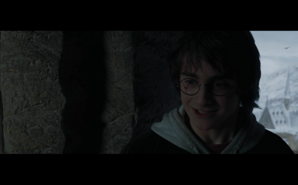 Harry Potter and the Goblet of Fire - 1003