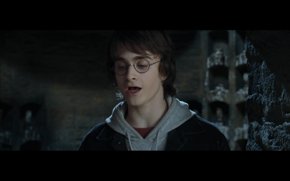 Harry Potter and the Goblet of Fire - 1006