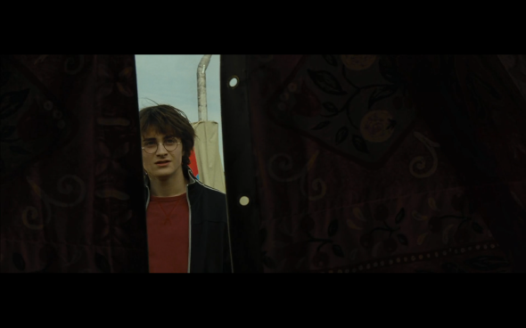 Harry Potter and the Goblet of Fire - 106