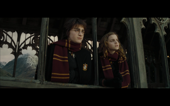 Harry Potter and the Goblet of Fire - 1129