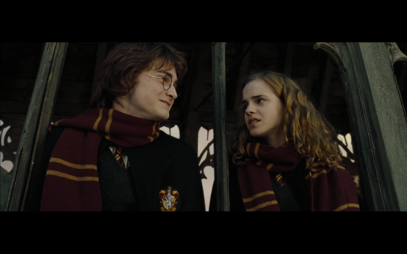 Harry Potter and the Goblet of Fire - 1132