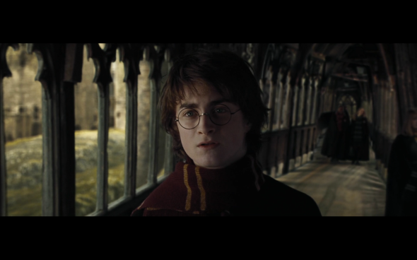 Harry Potter and the Goblet of Fire - 1139