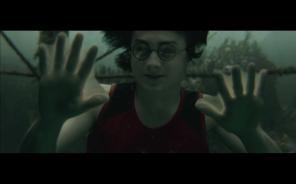 Harry Potter and the Goblet of Fire - 1192