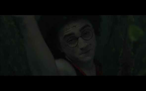 Harry Potter and the Goblet of Fire - 1223
