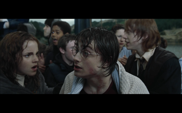 Harry Potter and the Goblet of Fire - 1230