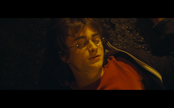 Harry Potter and the Goblet of Fire - 183